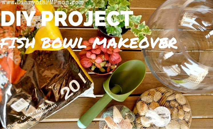 Diy project fish bowl makeover diary of a pmp mom for Book with fish bowl on cover