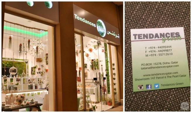 Tendaces 6