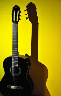 The shadow self of the 'acoustic' guitar - the inner, darker, 'electrical 'side..