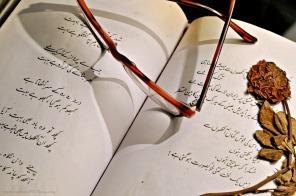 For the love of urdu poetry..