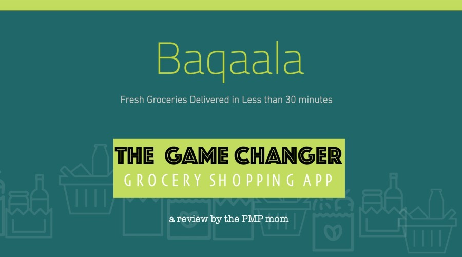 The Game Changer In Grocery Shopping! – DIARY OF A PMP MOM