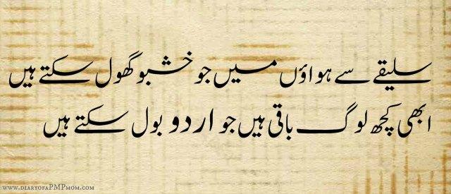 UrduBolSakteHain-2