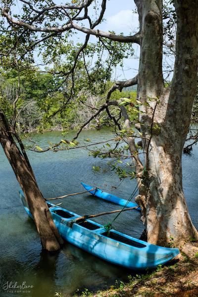 Canoe Lake Srilanka .jpg