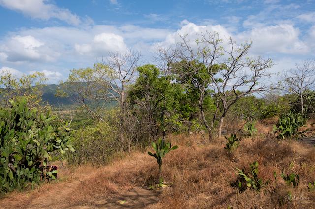 SriLanka climate