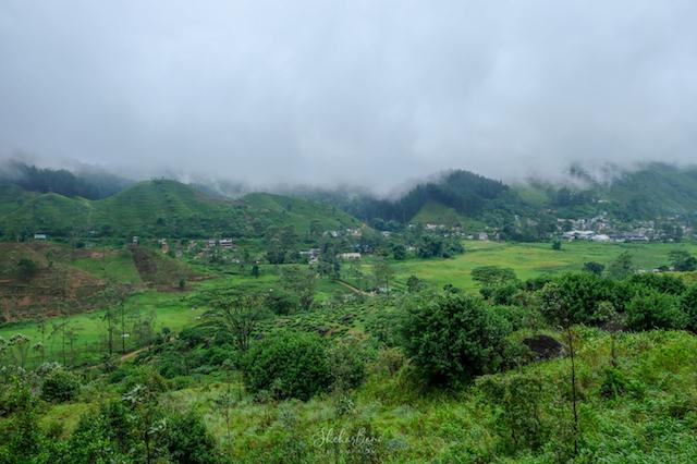 Srilanka Landscape 4 .jpg