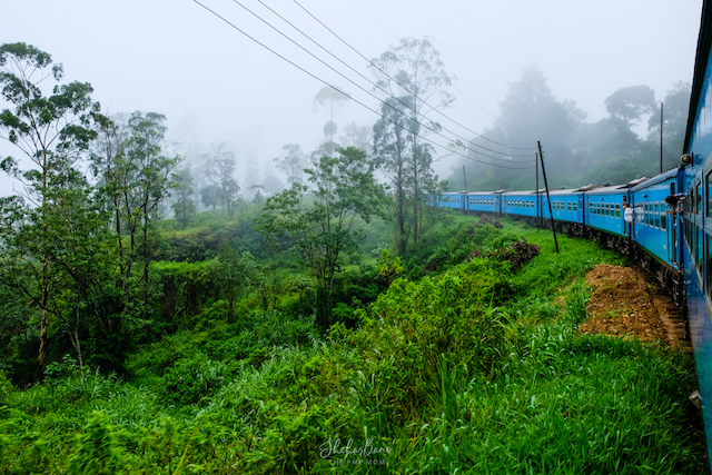 Srilanka Train Ride.jpg